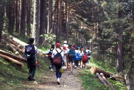 Hiking areas suitable for kids