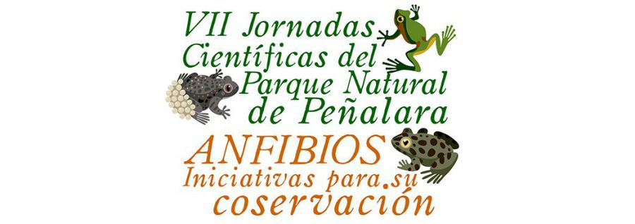 Amphibians:  Initiatives for their preservation