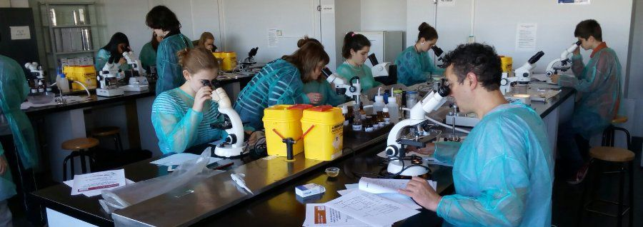 The Protists in Madri+d Science Week